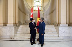 Vietnamese FM meets with Acting FM of Cuba