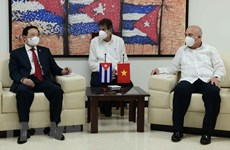 Vietnam, Cuba share experience in party building