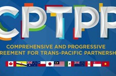 Vietnam ready to share information, experience in joining CPTPP: Spokeswoman
