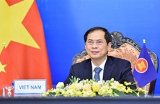 Vietnamese Ambassador highlights upcoming Russia visit by Foreign Minister