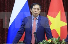 FM Bui Thanh Son meets Vietnamese community in Russia