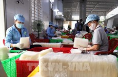 Nearly 70 percent of firms in Tay Ninh resume production