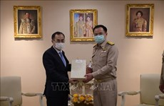 Vietnam, Thailand enhance collaboration in health amidst COVID-19