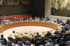 Vietnam backs non-proliferation, disarmament of nuclear weapons: ambassador