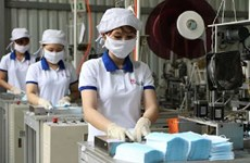 Vinh Long works to support business in local IPs amid COVID-19