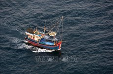 Da Nang spends over 20 bln VND for offshore fishing vessels