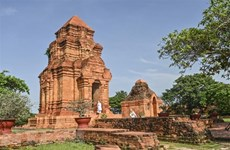 Cham ethnic community in Binh Thuan celebrates Kate festival