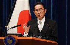 Prime Minister Pham Minh Chinh congratulates Japan's new PM