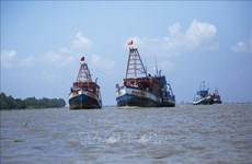 EC to review Vietnam's efforts against IUU at online meeting