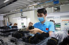 Ho Chi Minh City yet to show signals of business recovery