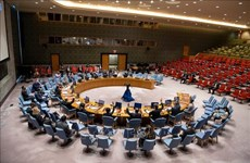 Vietnam urges respect for, full implementation of Chemical Weapons Convention