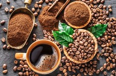Large room for Vietnam's coffee export to North Europe