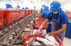 Seafood exports in September down, recovery slow
