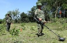 Vietnamese, UK organisations cooperate in addressing post-war bombs, mines
