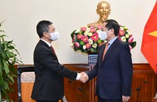 Foreign Minister receives Indonesian Ambassador to Vietnam