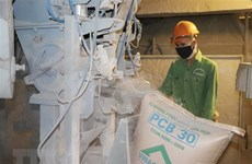 Cement sales rise despite difficulties caused by COVID-19 pandemic