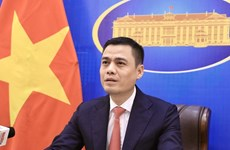 Vietnam resolved to join efforts for peace, development in Asia: Deputy FM