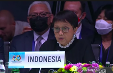 Indonesia highlights COVID-19 vaccine inequity at NAM's 60th anniversary