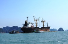 Plans for coastal transport development under discussion