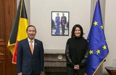 Plenty of room to Vietnam, Belgium to expand ties: Diplomat