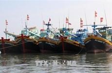 Ben Tre tightens handling of illegal fishing
