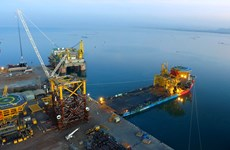 Vietnamese consortium selected to build offshore substations for wind power project in Taiwan