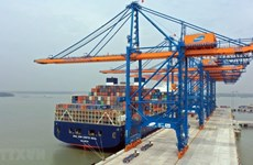 Volume of goods through seaports reach double-digit growth