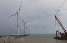 Poles of Tra Vinh's biggest wind power project installed