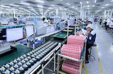 Dong Nai attracts 1.1 billion USD in FDI capital so far this year