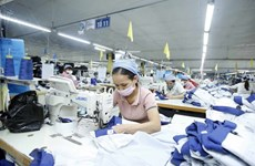 Vietnam's economy on course to record positive growth