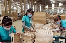 Good prospects for wood sector's recovery: experts