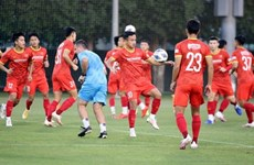 Vietnamese team's matches in AFC U23 Asian Cup qualifiers to be broadcast live