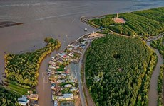 USAID-funded Mekong Delta Coastal Habitat Conservation project launched