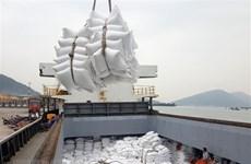Vietnamese rice exporters see great opportunities