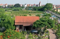Twelve out of 18 district of Hanoi recognised as new-style rural areas