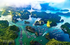 Vietnam plans return of tourism and hospitality after COVID-19
