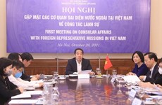 Foreign representative bodies get updates about Vietnam's consular policy