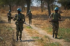 Vietnam calls on Sudan, South Sudan to exert stronger efforts in dealing with Abyei issue