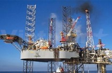 National oil group to tap four new oil fields