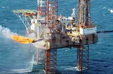 Vietsovpetro discovers new oil in Cuu Long basin