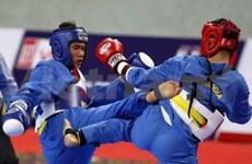 Vietnam triumphs at first vovinam champs