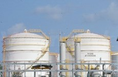 PM gives nod to crude oil, petroleum storage
