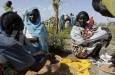 Vietnam calls for comprehensive peace in Sudan