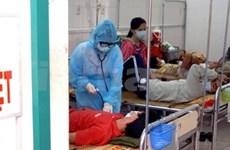 Vietnam sees 9,260 A/H1N1 flu cases so far