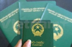 Vietnam to negotiate visa exemptions with several countries