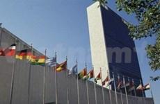 VN advocates UN General Assembly reform