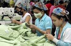 Textile-garment exports to Japan continue to rise