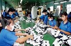 VN voices dissatisfaction with anti-dumping tax extension