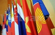 Vietnam takes over ASEAN's CPR chairmanship