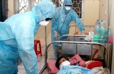 Vietnam's A/H1N1 prevention measures on track